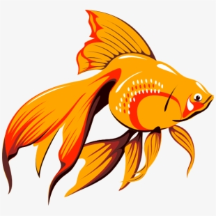 Clipart Of Fish, Article And Ago.