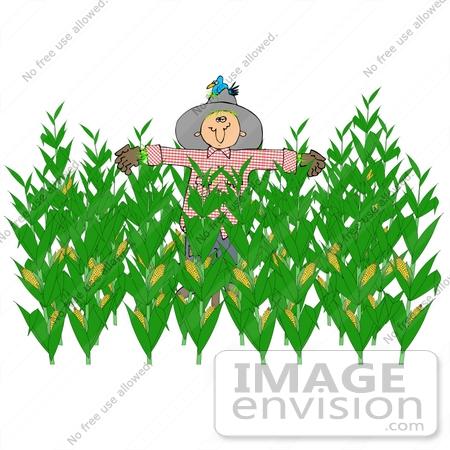 Farm Crops Clipart.