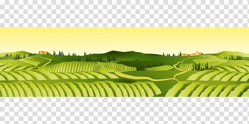 Green field illustartion, Agriculture Farm Agricultural land.