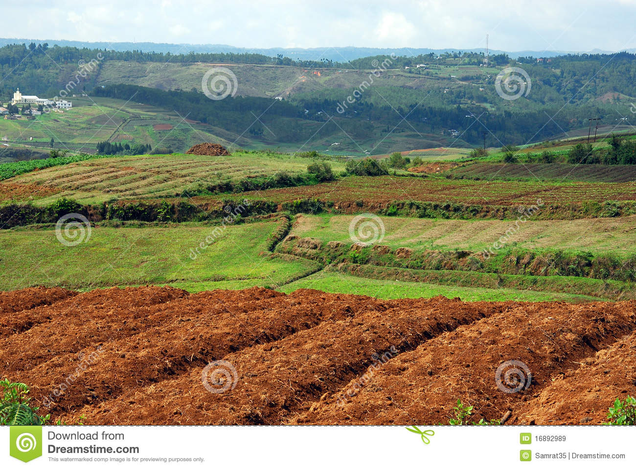 Indian Agricultural Land Royalty Free Stock Images.
