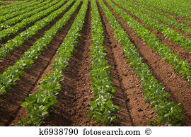 Agricultural lands Images and Stock Photos. 32,086 agricultural.