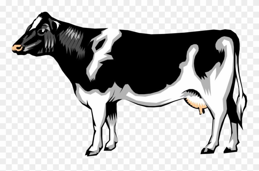 Vector Illustration Of Farm Agriculture Livestock Animal.