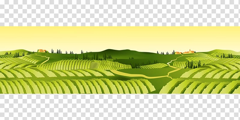 Field Agriculture Farm Agricultural land , field transparent.