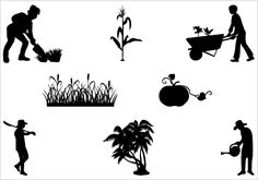 52 Best AGRICULTURE VECTOR images.