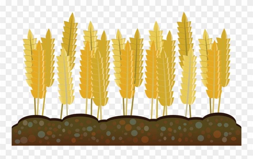 Vector Freeuse Agriculture Clipart Crop.