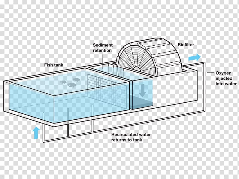 Fish farming Shrimp farming Agriculture Aquaponics, set.