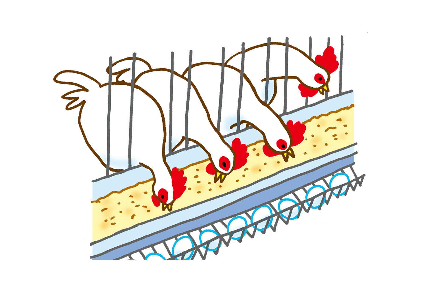 Clipart farm poultry farming, Clipart farm poultry farming.