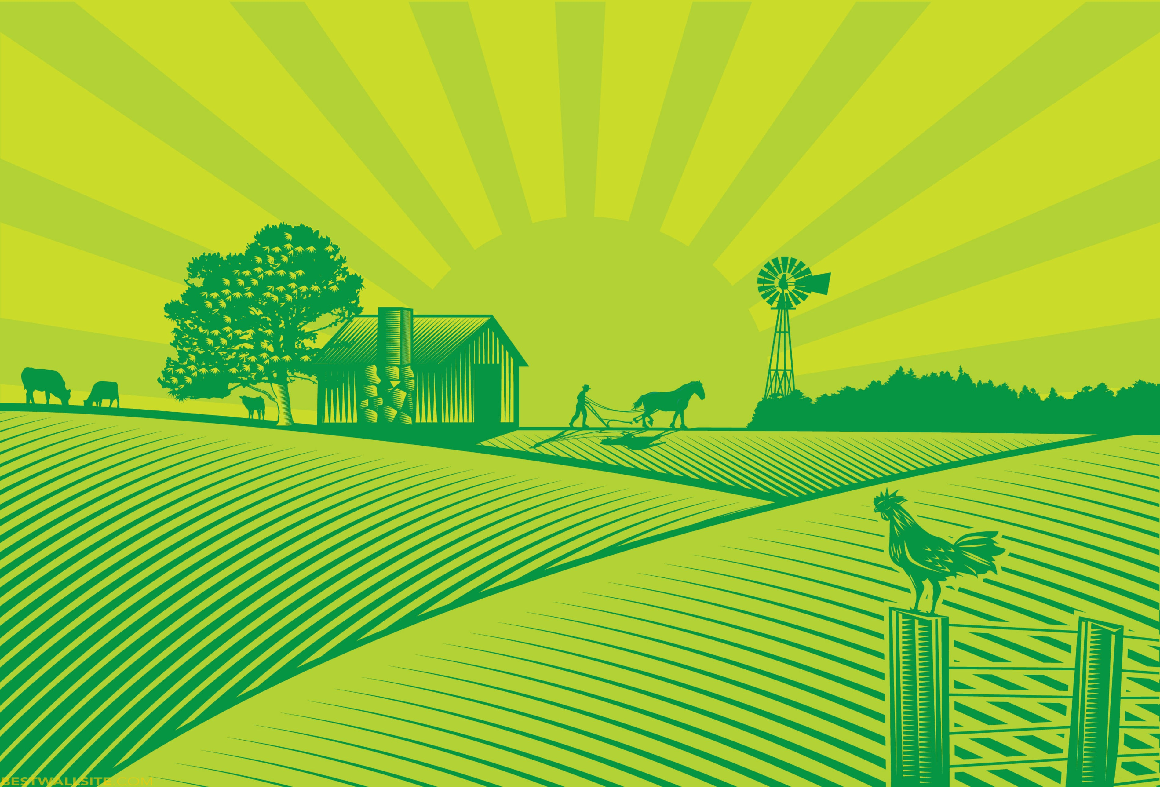 Agriculture Field Clipart.