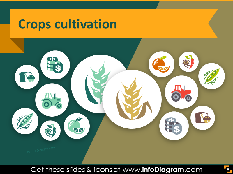 44 agriculture icons farming crop PPT presentation infographics.