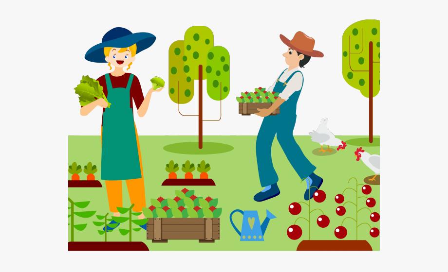 Farm Clipart Organic Farm.