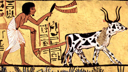 Ancient farmers irreversibly altered Earth\'s face by 3000.