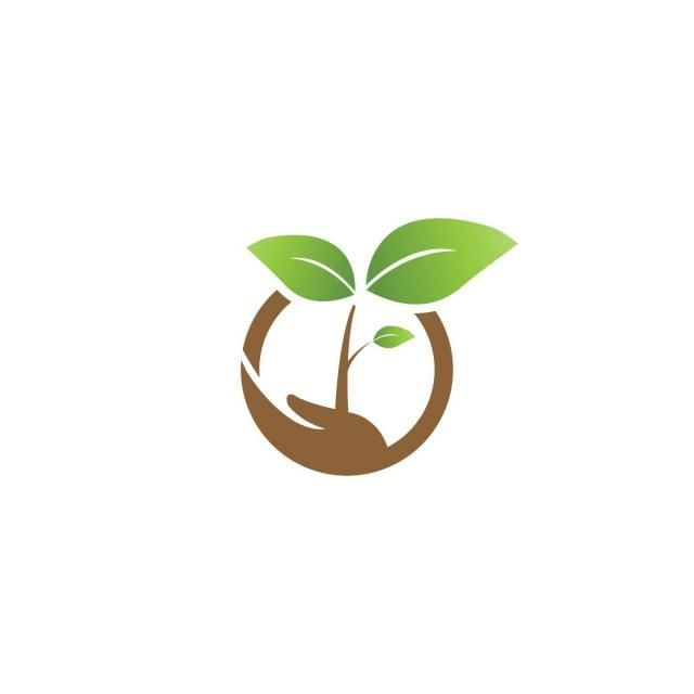 Elegant Sprout On A And Agriculture Logo Design Template.