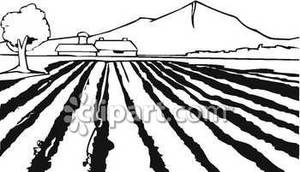Farm Field Rows Clipart Black And White.