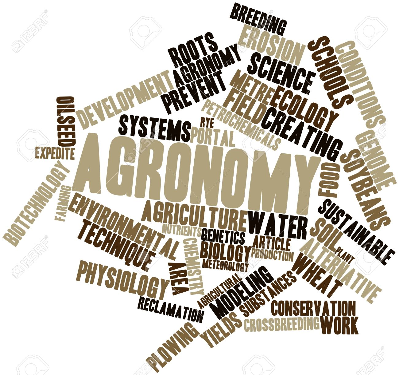 Abstract Word Cloud For Agronomy With Related Tags And Terms Stock.