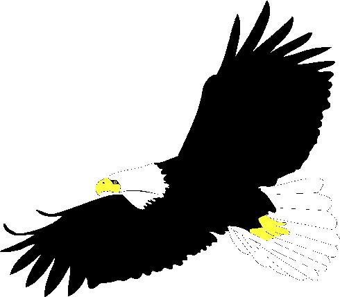 Eagle Clip Art Images Free.