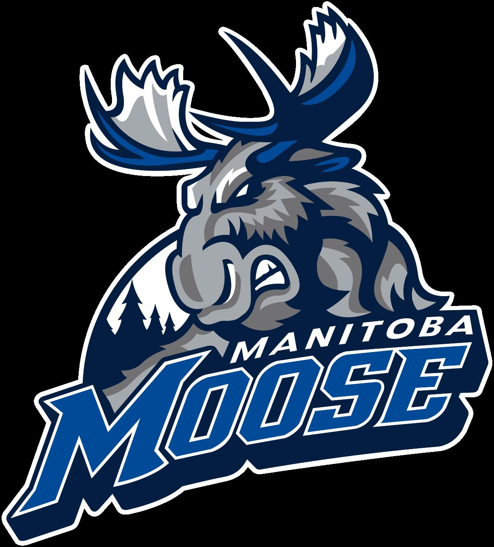 Manitoba Moose.