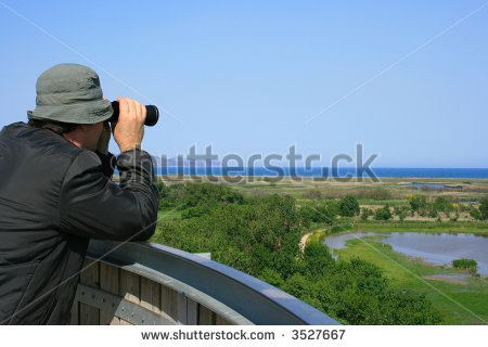 Bird Watcher Stock Photos, Royalty.
