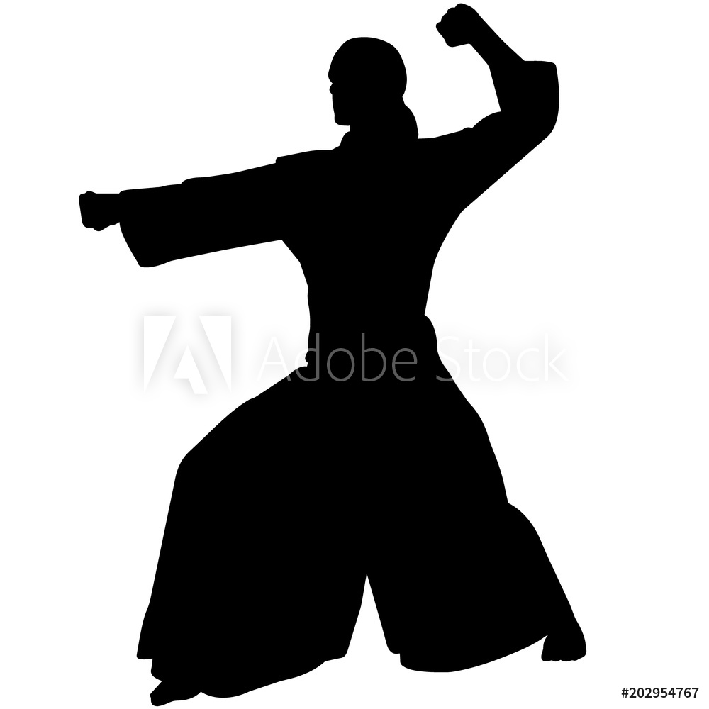 Photo & Art Print Aikido silhouette, Aikido clipart, Aikido.