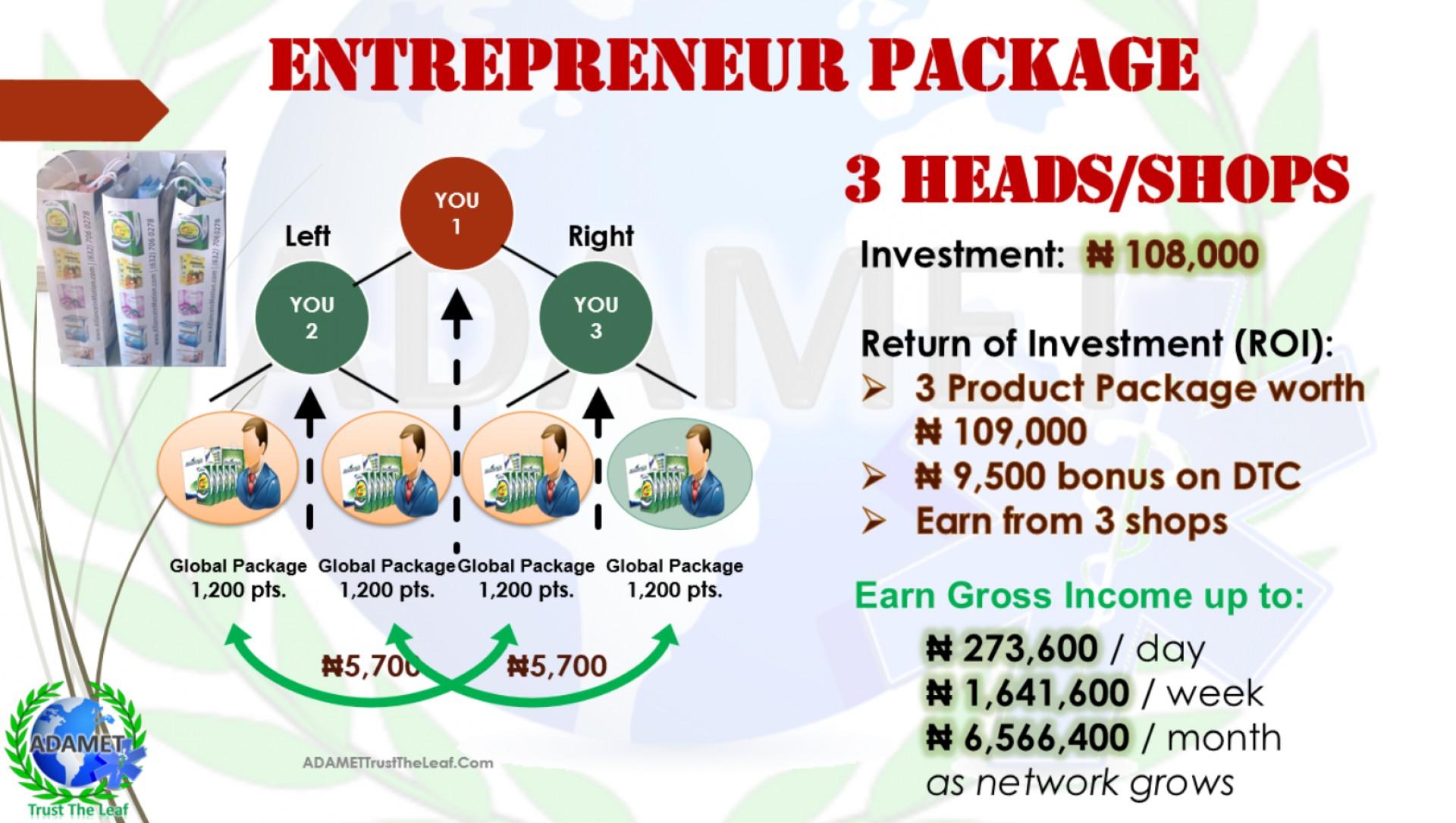 002 Aim Global Networking Marketing Plan Lazy Man Scenario Of.