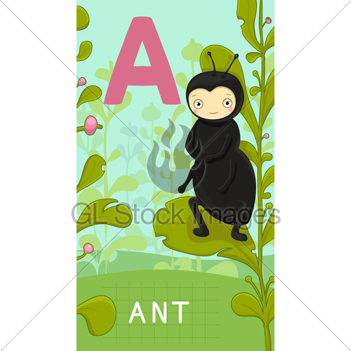 Letter A, Animal Abc · GL Stock Images.