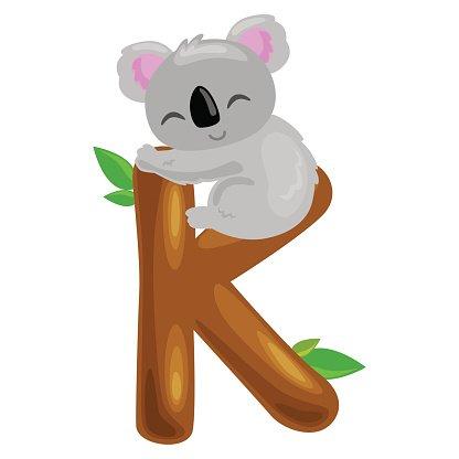 letter K with koala animal for kids abc education in Clipart.
