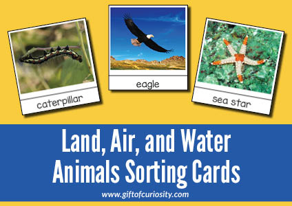 Sorting animals that live on land, air, and water.