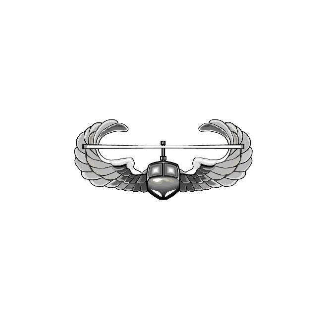 Air Assault crest US Army.