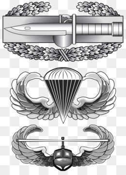 Free download United States Army Air Assault School Air.