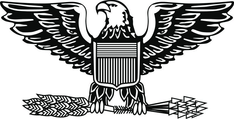 Army, Air Force, and Marine Corps insignia of the rank of.
