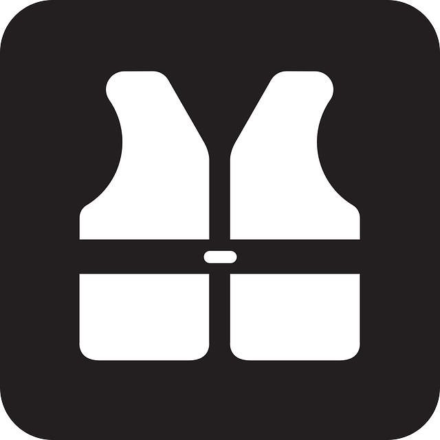 Free vector graphic: Life Jacket, Life Preserver.