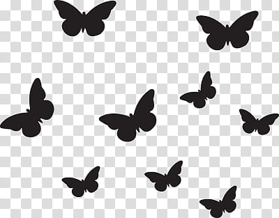 Black butterflies on mid air transparent background PNG.