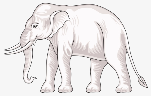 Free White Elephant Clip Art with No Background.