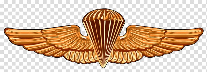United States Naval Academy Parachutist Badge Special.
