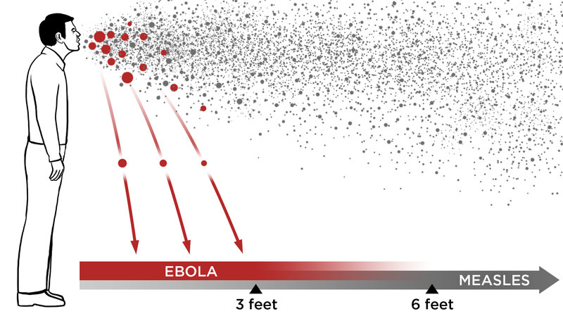 Ebola In The Air: What Science Says About How The Virus.