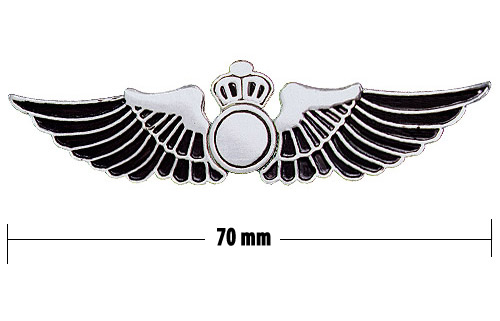 Flight Wings Pins Clipart.