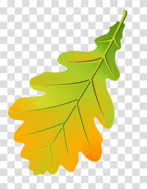 Airforce oak leaf cluster clipart clipart images gallery for.