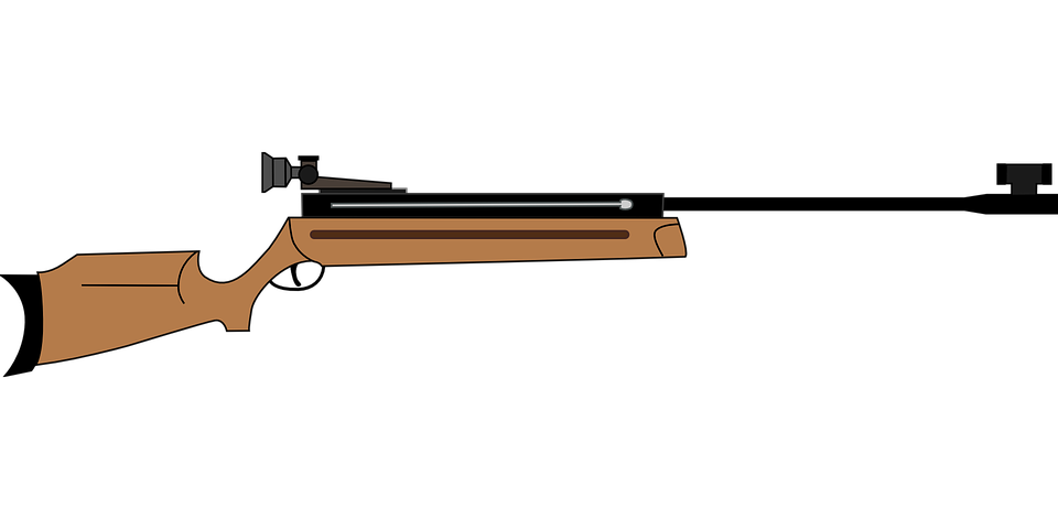 Free vector graphic: Airgun, Gun, Rifle, Shooting.