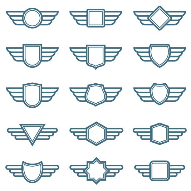 Best Pilot Wings Illustrations, Royalty.