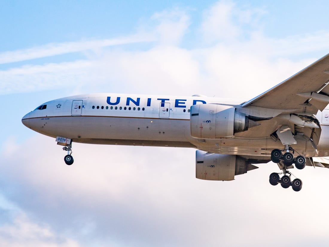 A passenger was stung by a scorpion while on a United.
