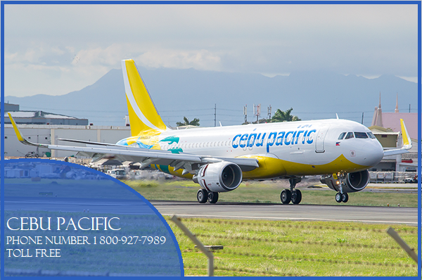 Cebu Pacific airlines booking phone number for easy and.