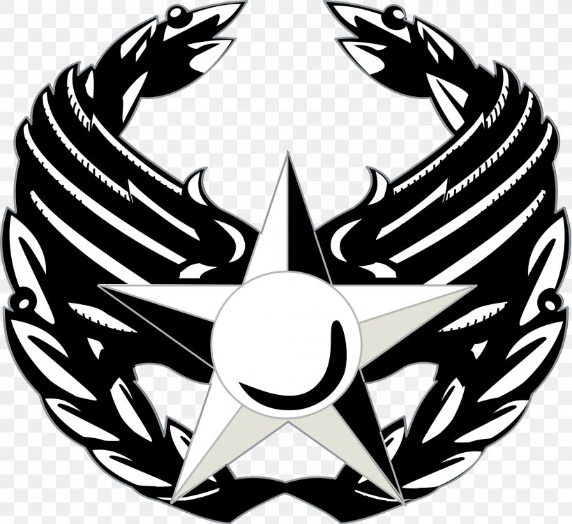 United States Air Force Enlisted Rank Insignia Commander.