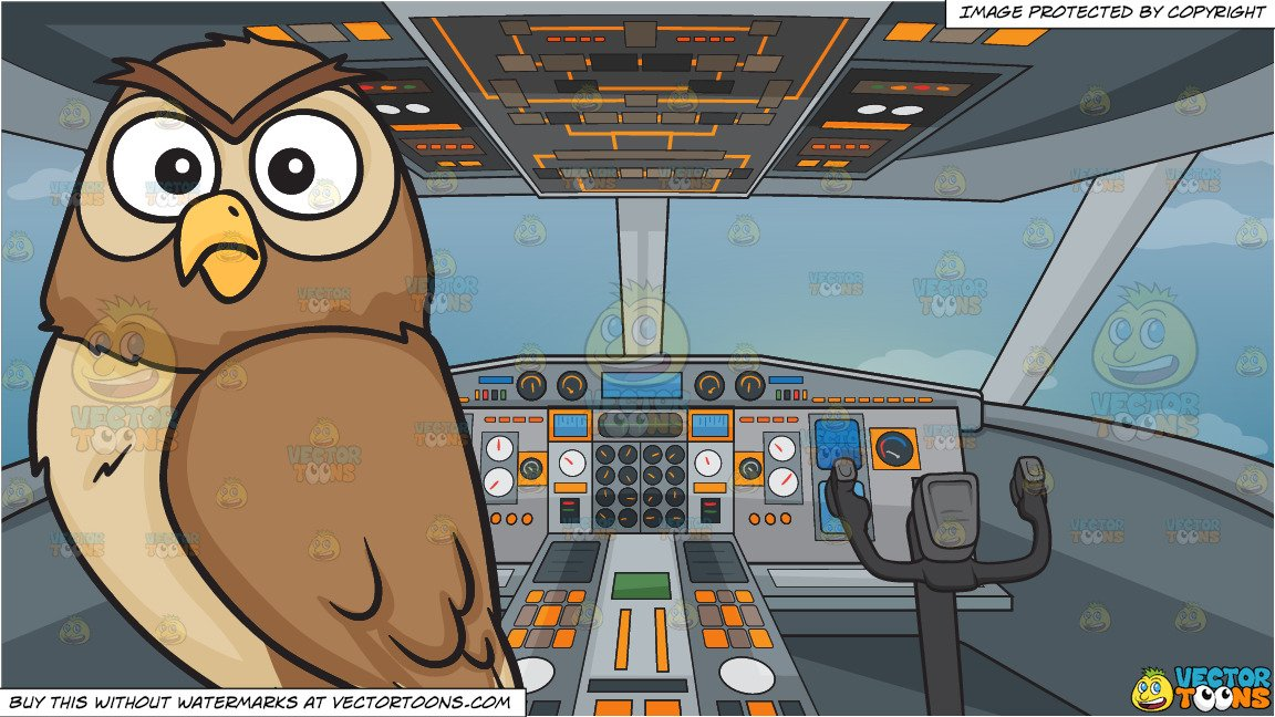A shocked night owl and Airplane Cockpit Background.
