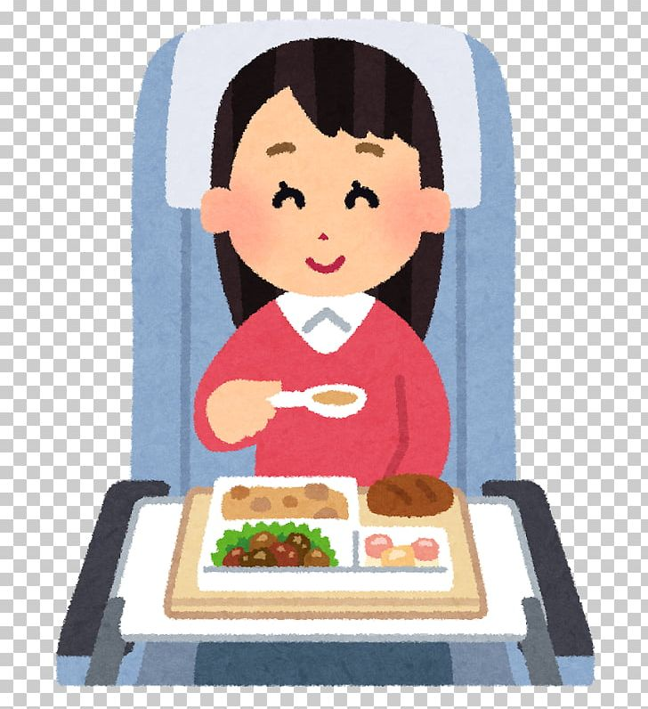 Bento Flight Airline Meal Economy Class Low.
