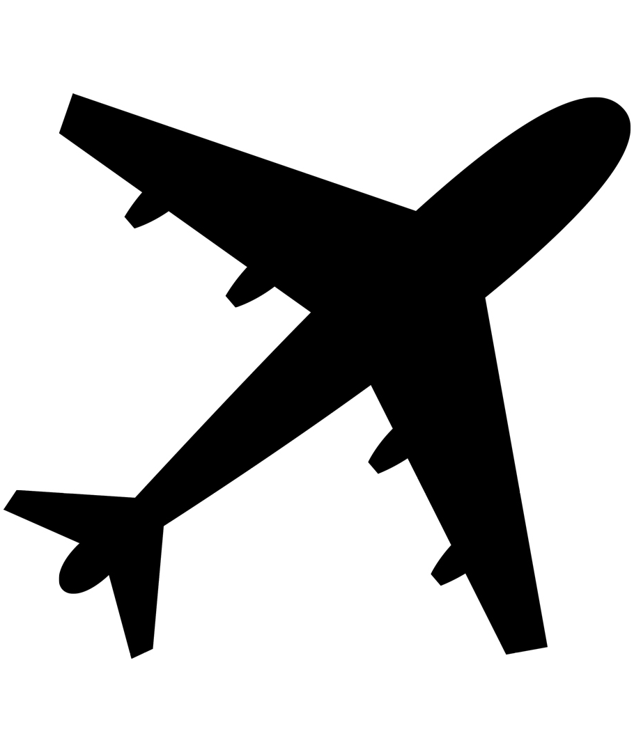 Plane Silhouette Tattoo.