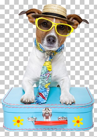 321 traveling With Dogs PNG cliparts for free download.