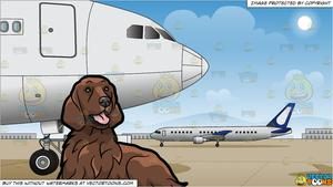 A Pretty Irish Setter Pet Dog and Airport Runway Background.