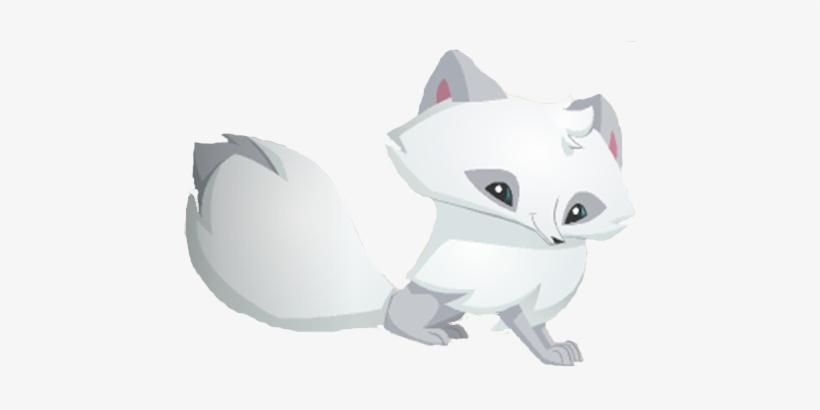 Arctic Fox Aj.