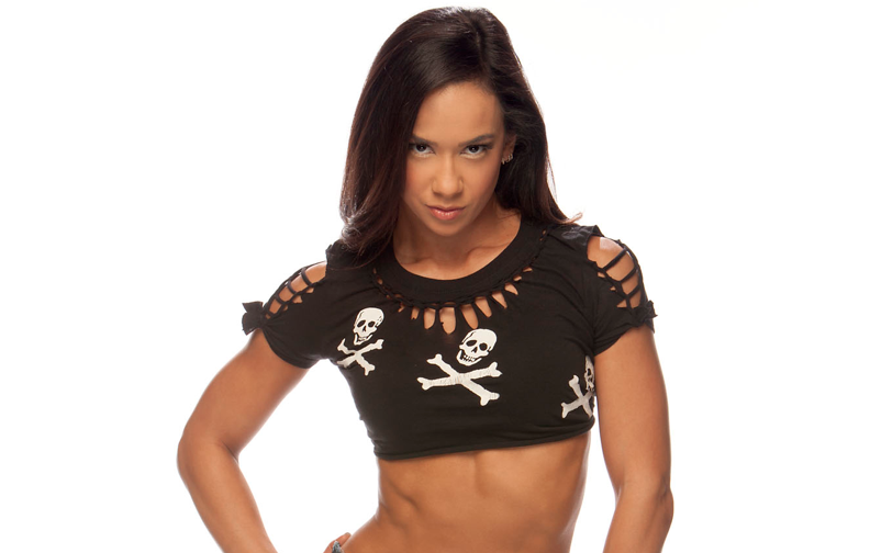 Divas champion AJ Lee stands out in WWE.