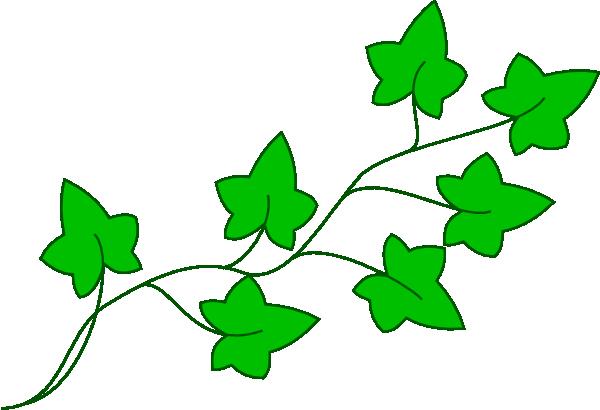 Ivy Vine Clip Art At Clker Com Vector Clip Art Online.