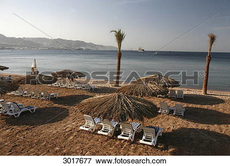 Picture of Deckchairs and sunshades at the beach of Aqaba at the.